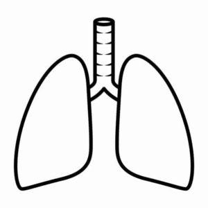 Asbestos & Mesothelioma Information for HVAC Technicians