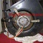 Blower motor and squirrel cage