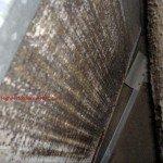 Dirty Evaporator Coils